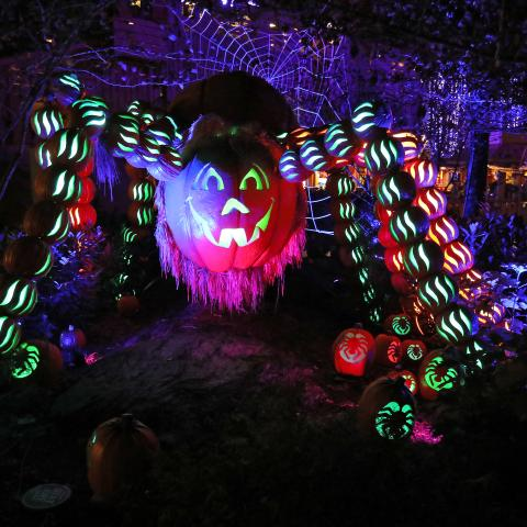A pumpkin spider sculpture at Dollywood in Pigeon Forge, Tennessee